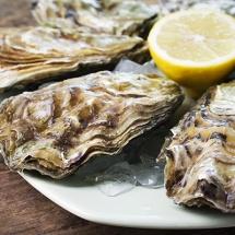 Zeeuwse-creuse-oester